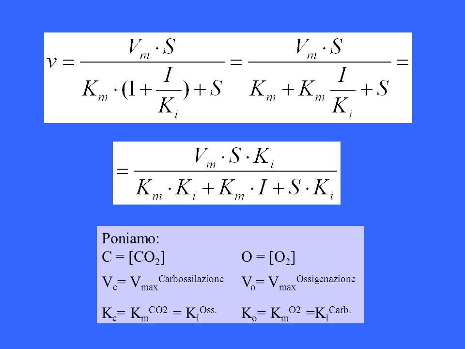 Poniamo: C = [CO2] O = [O2] Vc= VmaxCarbossilazione Vo= VmaxOssigenazione.